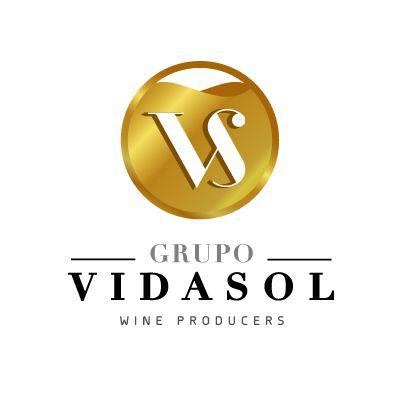 Logo for:  Vidasol Group