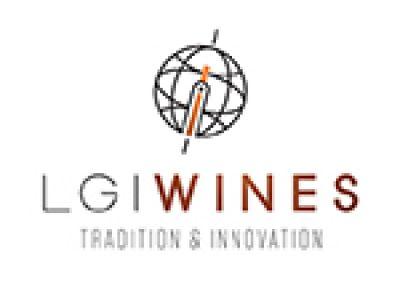 Logo for:  LGI USA